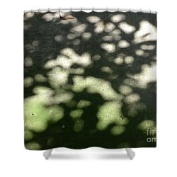 Shaded Patterns Shower Curtain