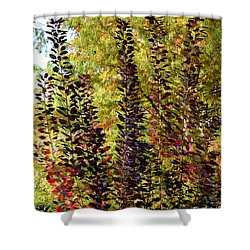 Shades Of Fall Shower Curtain by Deborah  Crew-Johnson