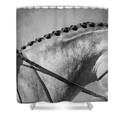 Shades Of Grey Fine Art Horse Photography Shower Curtain