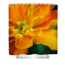 Shower Curtain featuring the photograph Shades Of Orange by Eduard Moldoveanu