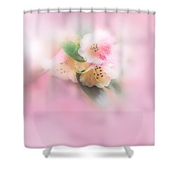 Shades Of Pink Shower Curtain