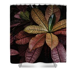 Shades Of Red Shower Curtain by Judy Wolinsky