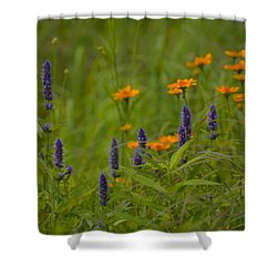 Shades Of Summer Shower Curtain by Tim Good
