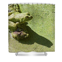 Shadow And Frog Shower Curtain