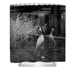 Shadow And Light 13 - Reflections - A Shower Curtain