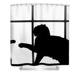 Shadow Boxing Shower Curtain