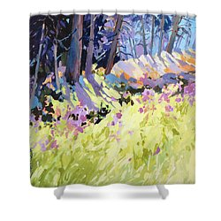 Shower Curtain featuring the painting Shadow Dance Alaska by Rae Andrews