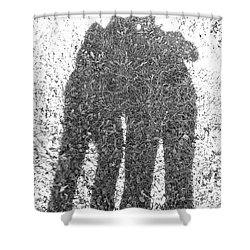 Shower Curtain featuring the photograph Shadow In The Meadow Bw by Wilhelm Hufnagl