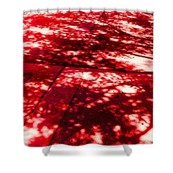 Shadow Of A Tree Shower Curtain