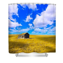 Shower Curtain featuring the photograph Shadow Of Life by Kadek Susanto