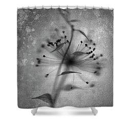 Shadow Play Shower Curtain