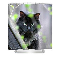 Shadow Predator Shower Curtain
