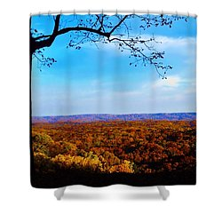 Shadow To Light Shower Curtain