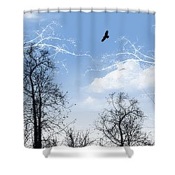 Shower Curtain featuring the painting Shadow by Trilby Cole