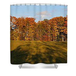 Shadows Bow Shower Curtain