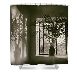 Shadows Dance Upon The Wall Shower Curtain