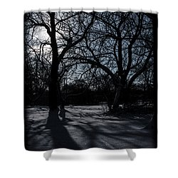 Shadows In January Snow Shower Curtain
