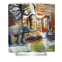 Shadows Of The Past , Hope For The Future Shower Curtain
