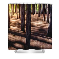 Shower Curtain featuring the photograph Shadows by Okan YILMAZ
