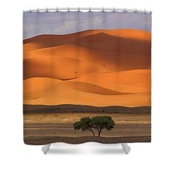 Shower Curtain featuring the photograph Shadows On The Dunes by Ramona Johnston