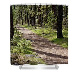 Shower Curtain featuring the photograph Shadows On The Path by Ben Upham III
