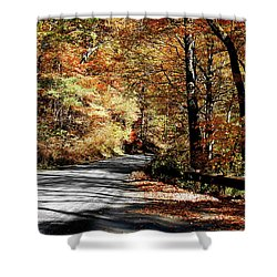 Shadows On The Road Shower Curtain