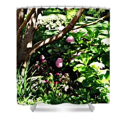 Shower Curtain featuring the photograph Shadows Through The Garden by Glenn McCarthy Art and Photography
