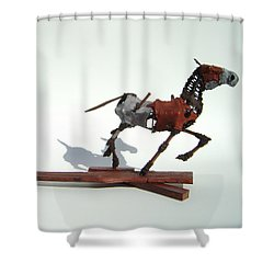 Shadrach Shower Curtain