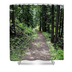 Shower Curtain featuring the photograph Shady Grove Path by Ben Upham III