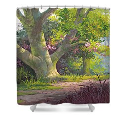 Shady Oasis Shower Curtain by Michael Humphries