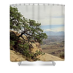 Shafer Canyon Overlook Shower Curtain