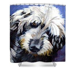 Shaggy Dog Portrait Shower Curtain by Alice Leggett