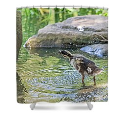 Shower Curtain featuring the photograph Shake It Off by Kate Brown