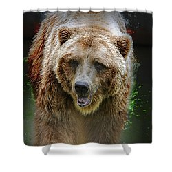 Shaking It Off Shower Curtain
