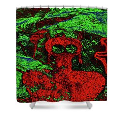 Shaman And Helper Shower Curtain by David Lee Thompson