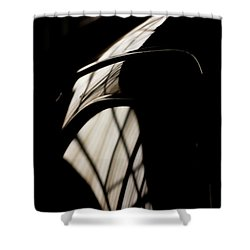 Shapes Shower Curtain by Paul Job