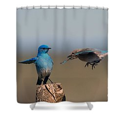 Share My Post Shower Curtain by Mike Dawson
