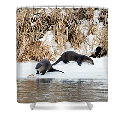 Sharing A Meal Shower Curtain