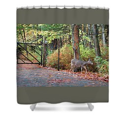 Sharing The Land - Shower Curtain