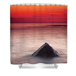 Shark Fin Shower Curtain by Evgeni Dinev