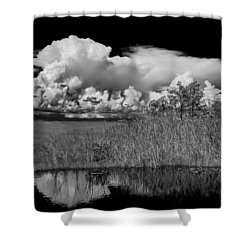 shark river slough BW Shower Curtain by Rudy Umans
