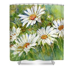 Shasta Daisies Shower Curtain