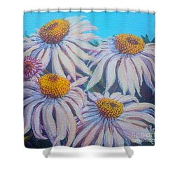 Shasta Daisy#1 Shower Curtain