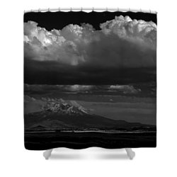 Shasta On July 17 Shower Curtain