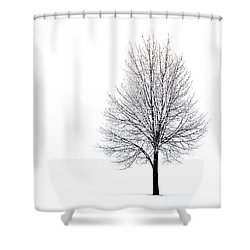 Shower Curtain featuring the photograph She Said She'd Come by Yvette Van Teeffelen
