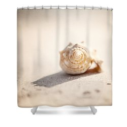 She Sells Sea Shells Shower Curtain by Lisa Russo