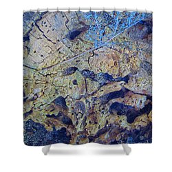 She Speaks Of Moon Time Shower Curtain