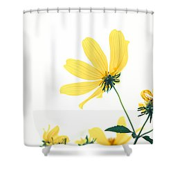 Shower Curtain featuring the photograph She Will Bring Out The Best by Wade Brooks
