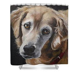 Shea Vt 2 Shower Curtain