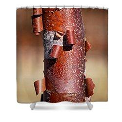#sheddingthepast Shower Curtain